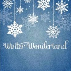 winter-wonderland-party-invitations-for-a-drop-dead-Party-invitation-with-smart-design-8
